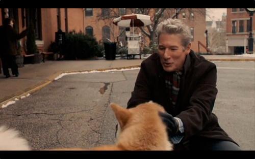 De que pelicula es la imagen de Richard Gere con un perro