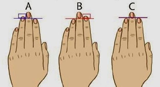 el caracter de la persona y la longitud de los dedos de la mano test